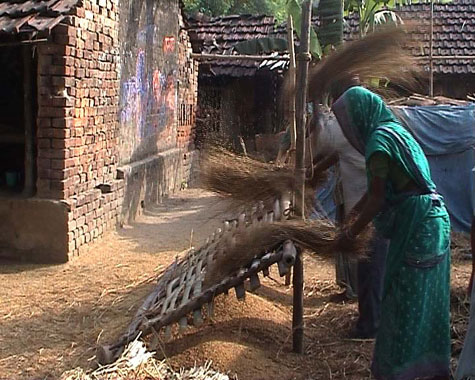 image of women in indian village threashing grain