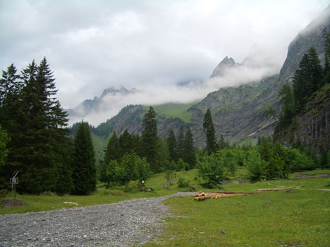 view of Swiss mountain landscape im summer