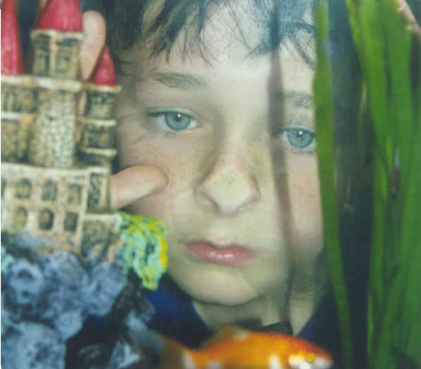 young boy looking through a fishtank